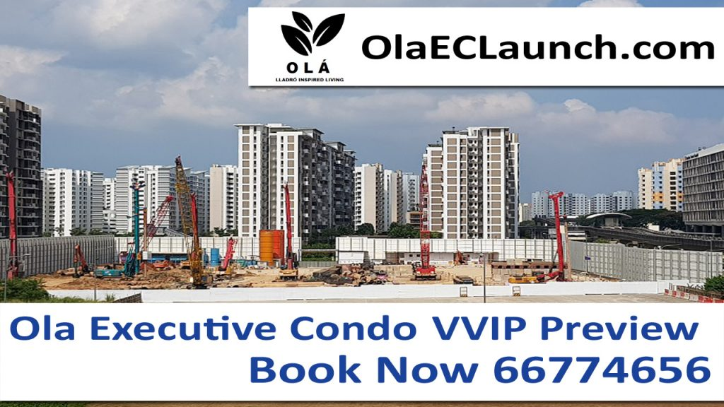 OLA-EC-Actual-Site-Construction